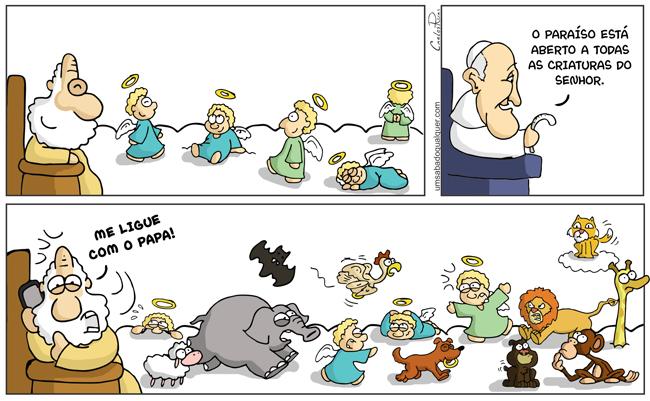 Papa Francisco afirma que os animais irão para céu