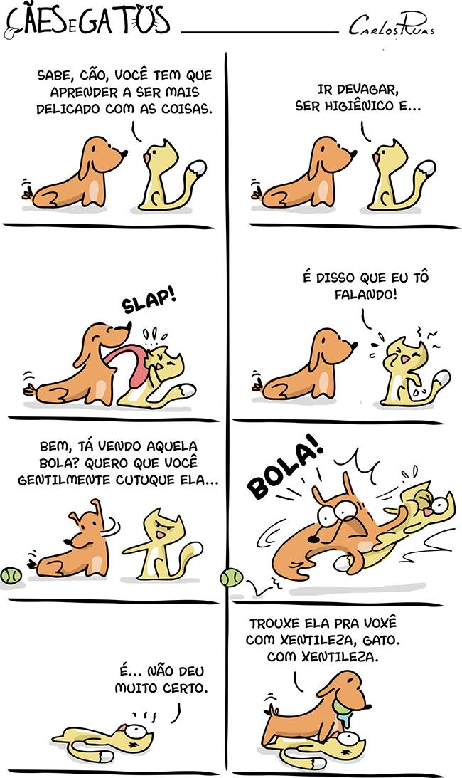 Cães e Gatos em – Aprendendo a ter modos