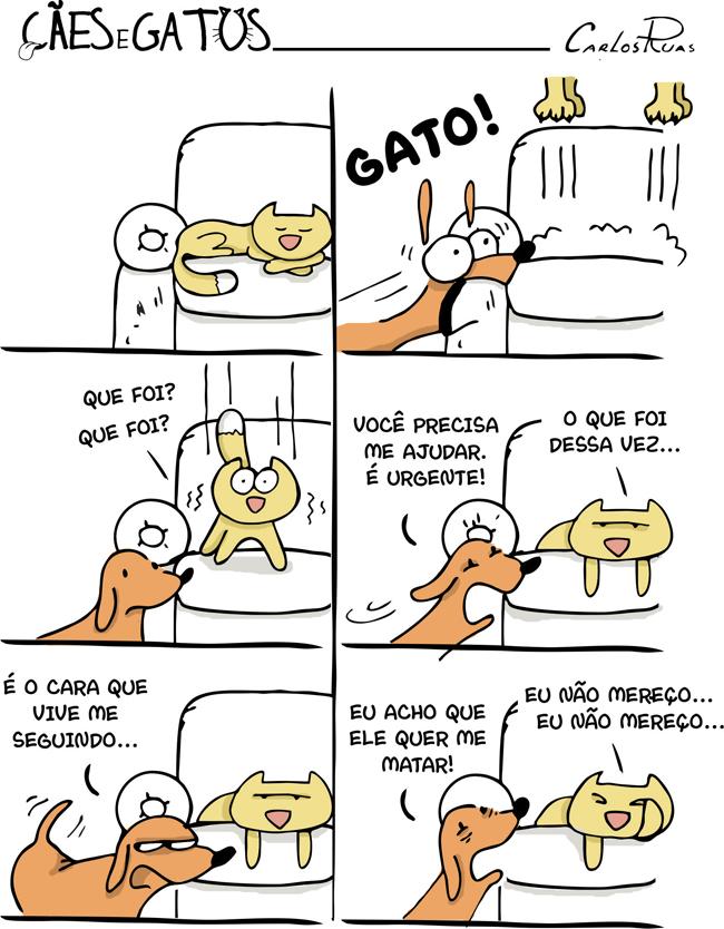 Cães e Gatos 3