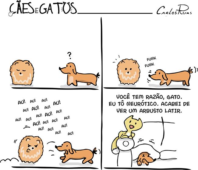 Cães e gatos – A visita