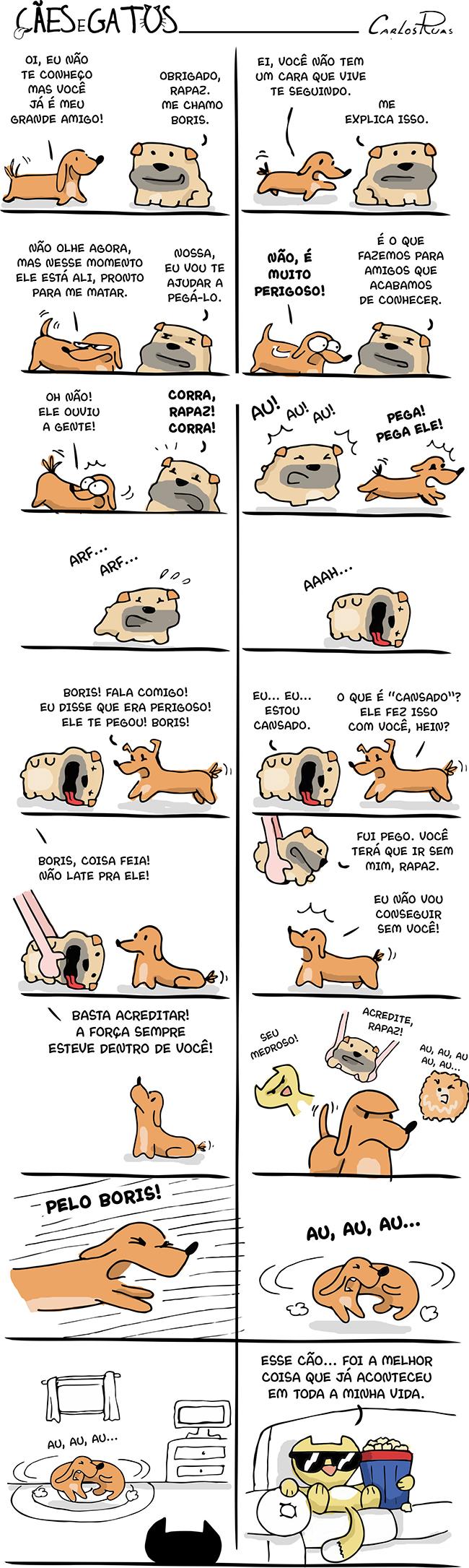Cães e Gatos – Uma aventura canina