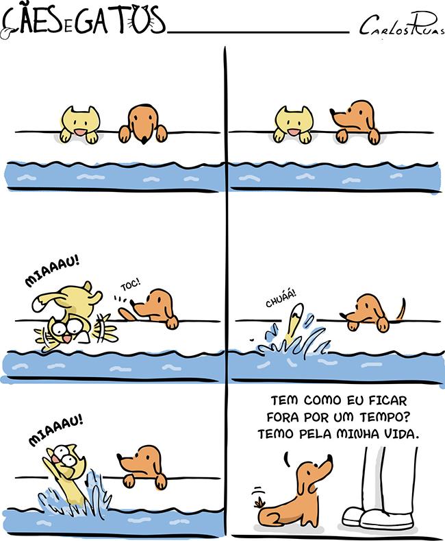 Cães e Gatos – temor