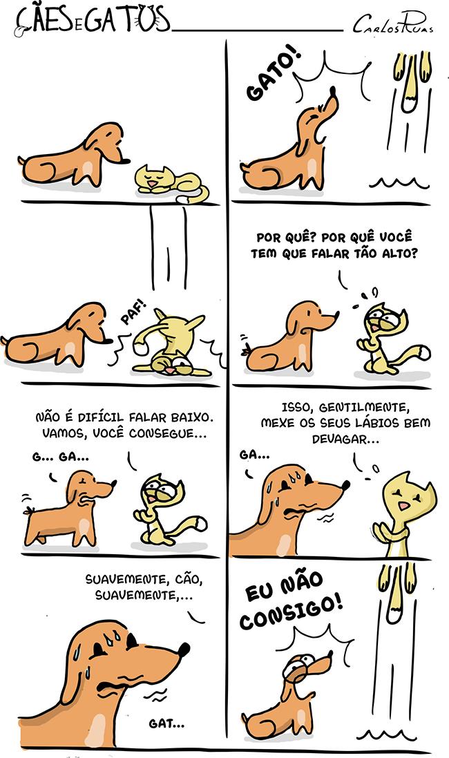 Cães e Gatos – Falar baixo