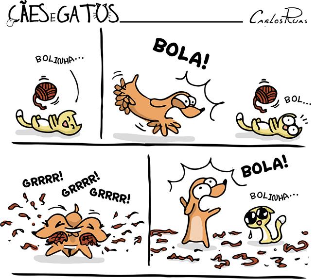 Cães e Gatos – Temperamentos