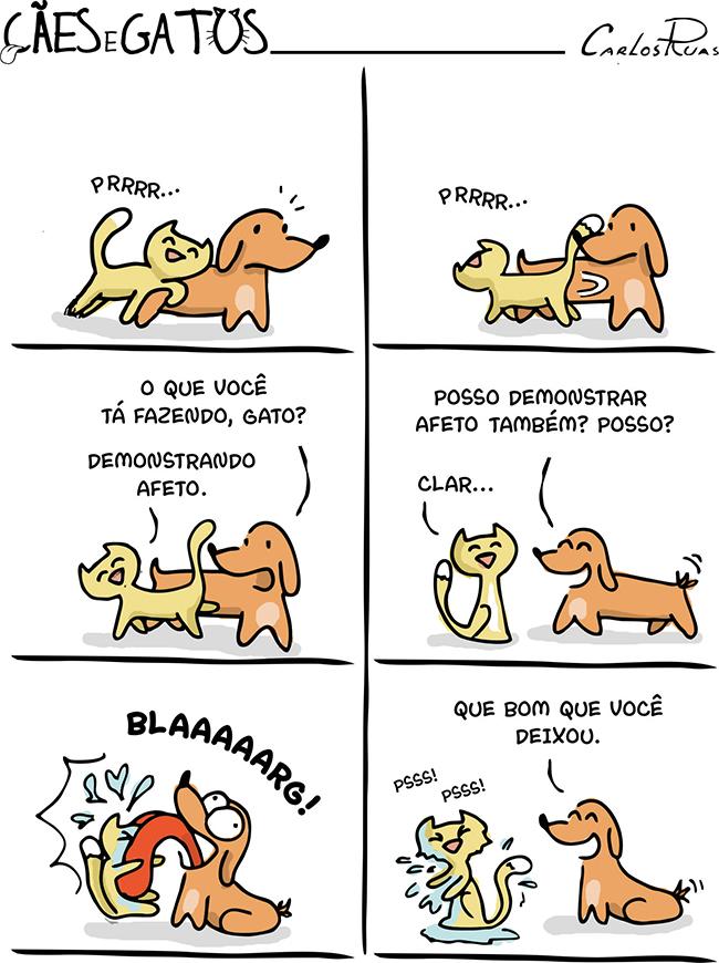 Cães e Gatos – Afeto