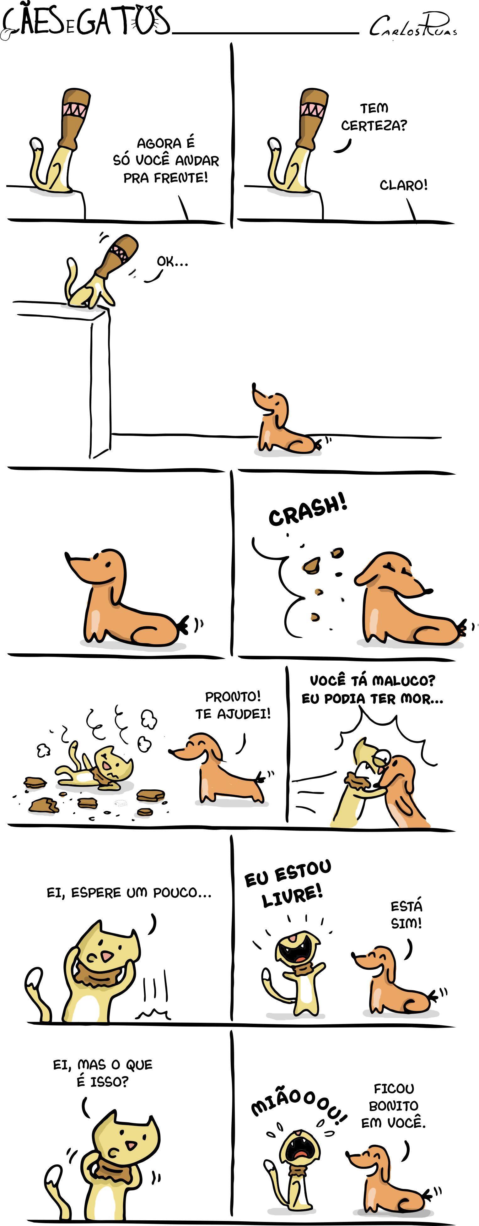Cães e Gatos – Chapéu do gato (final)