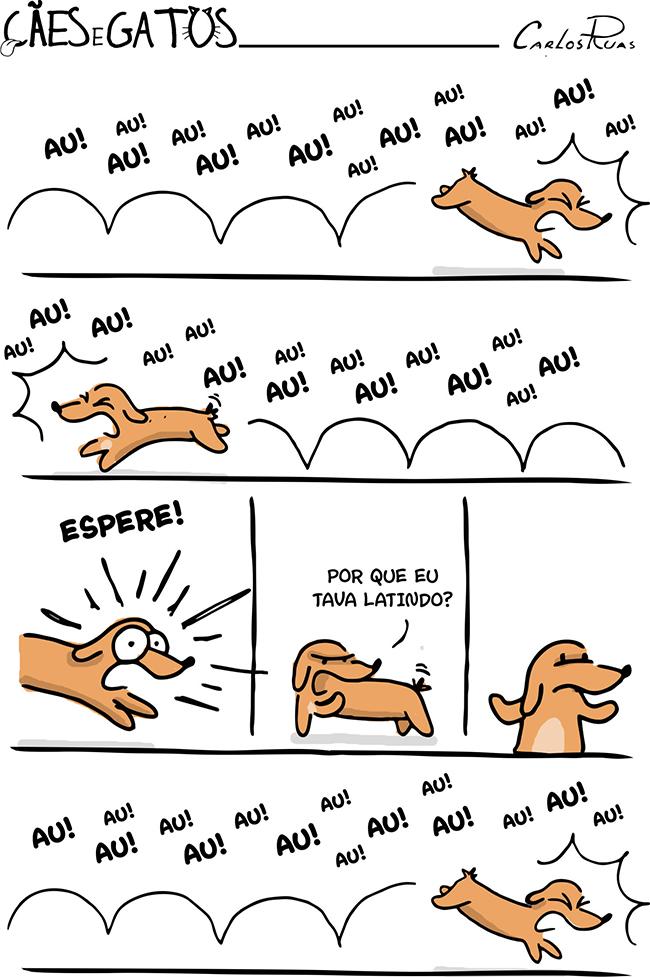 Cães e Gatos – Precisa de motivo? 2