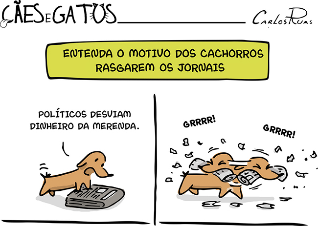 Cães e Gatos – Entenda porque os cachorros rasgam os jornais