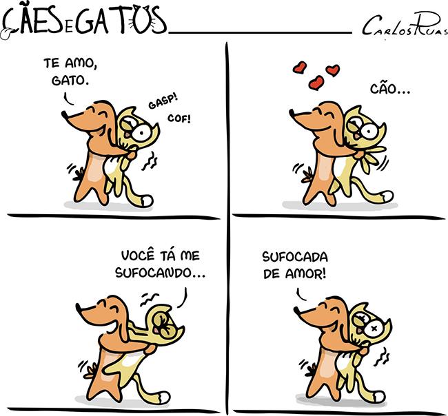 Cães e Gatos – Carência 1