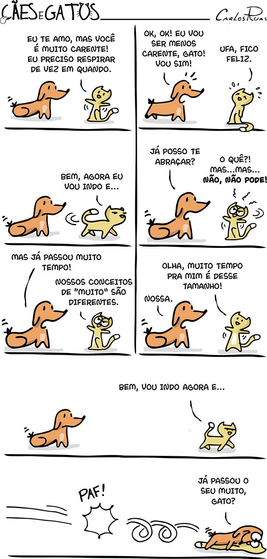 Cães e gatos – Carência 2