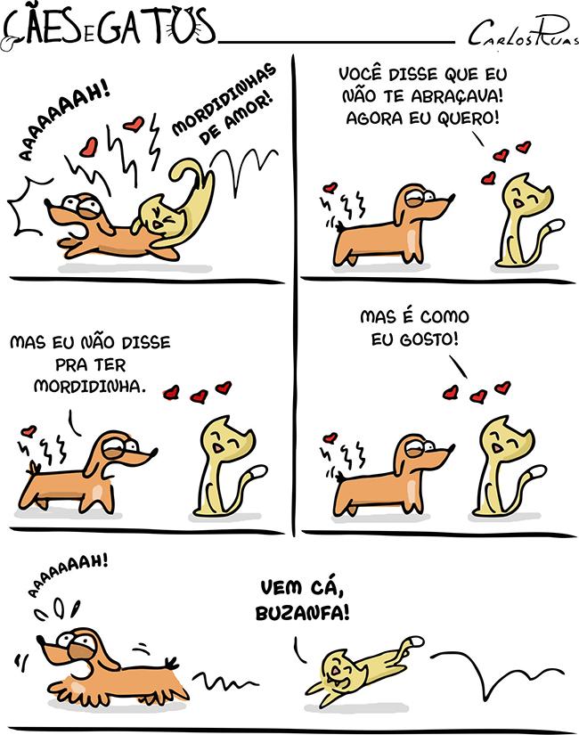 Cães e Gatos – carência 4