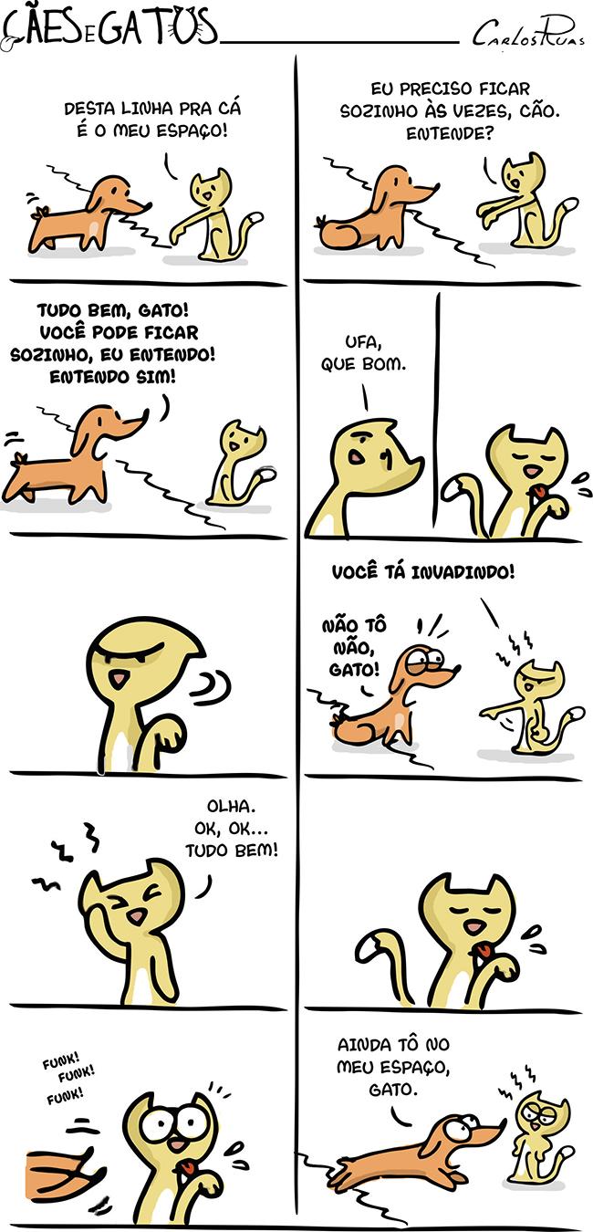 Cães e gatos – Carência 3