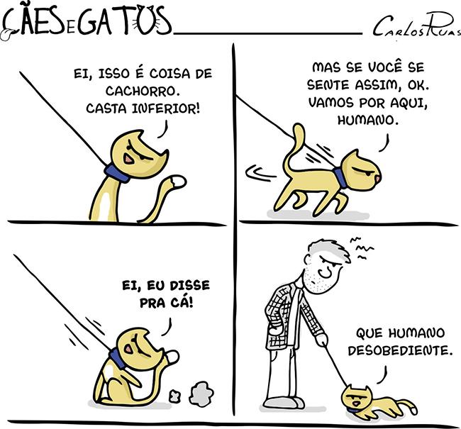 Cães e Gatos – Humano desobediente…