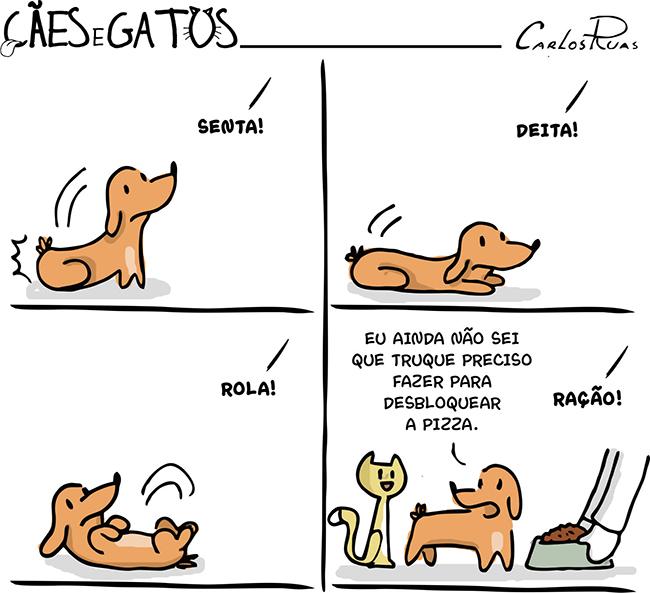 Cães e gatos – Truques 3