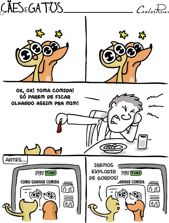 Cães e Gatos – É assim que eles descobrem…