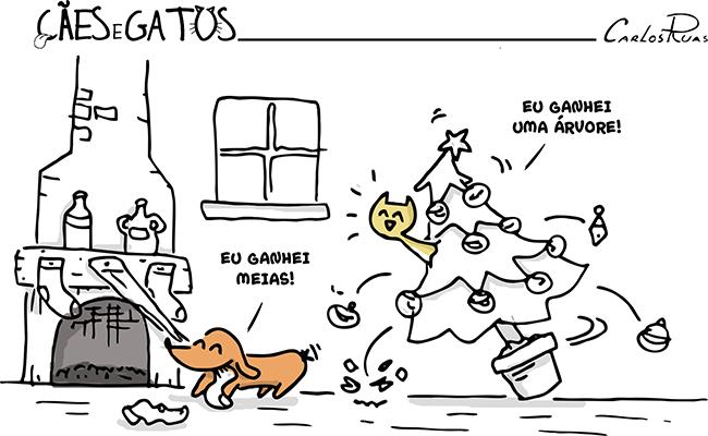 Cães e Gatos – Como é bom ganhar presente!