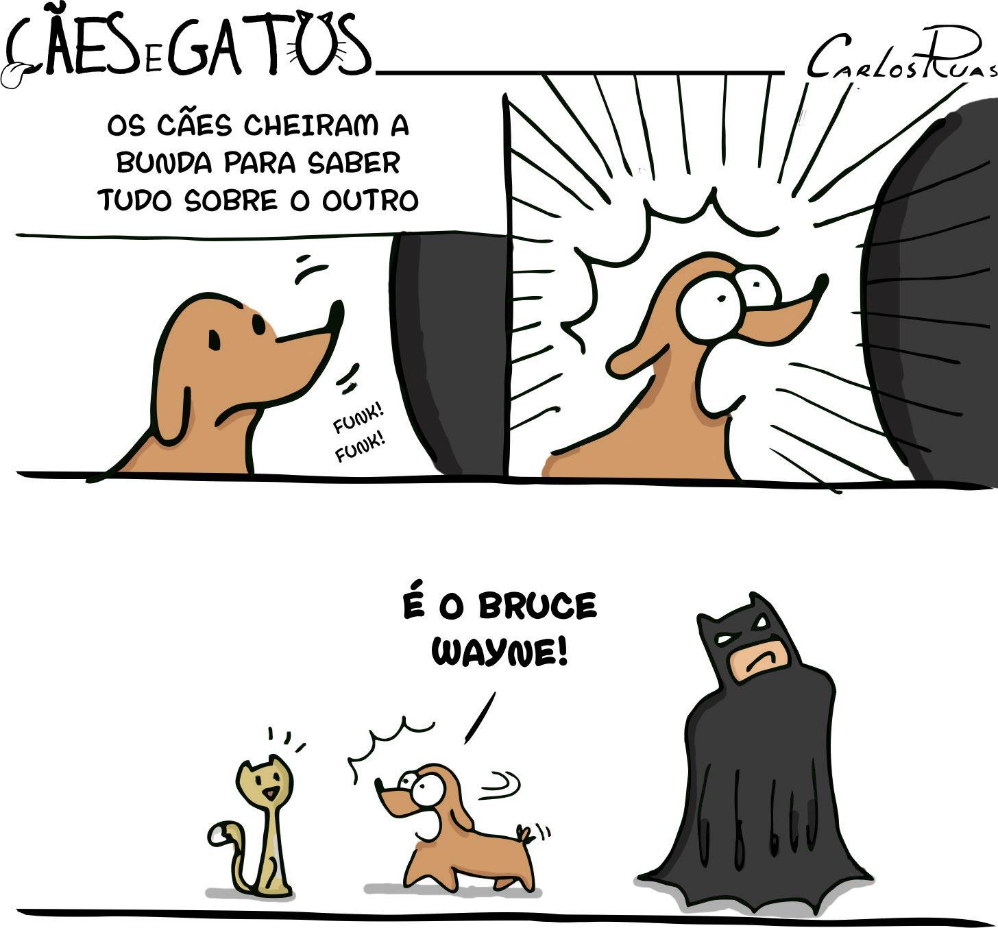 Cães e gatos – Revelações