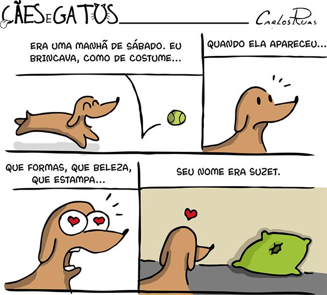 Cães e Gatos – Suzet