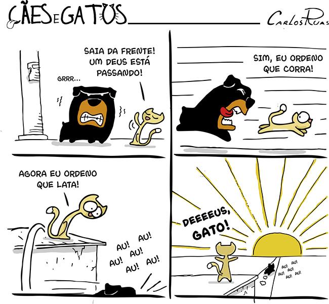 Cães e gatos – Deeeeus gato! 2