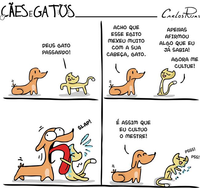 Cães e gatos – Deeeeus gato! 3