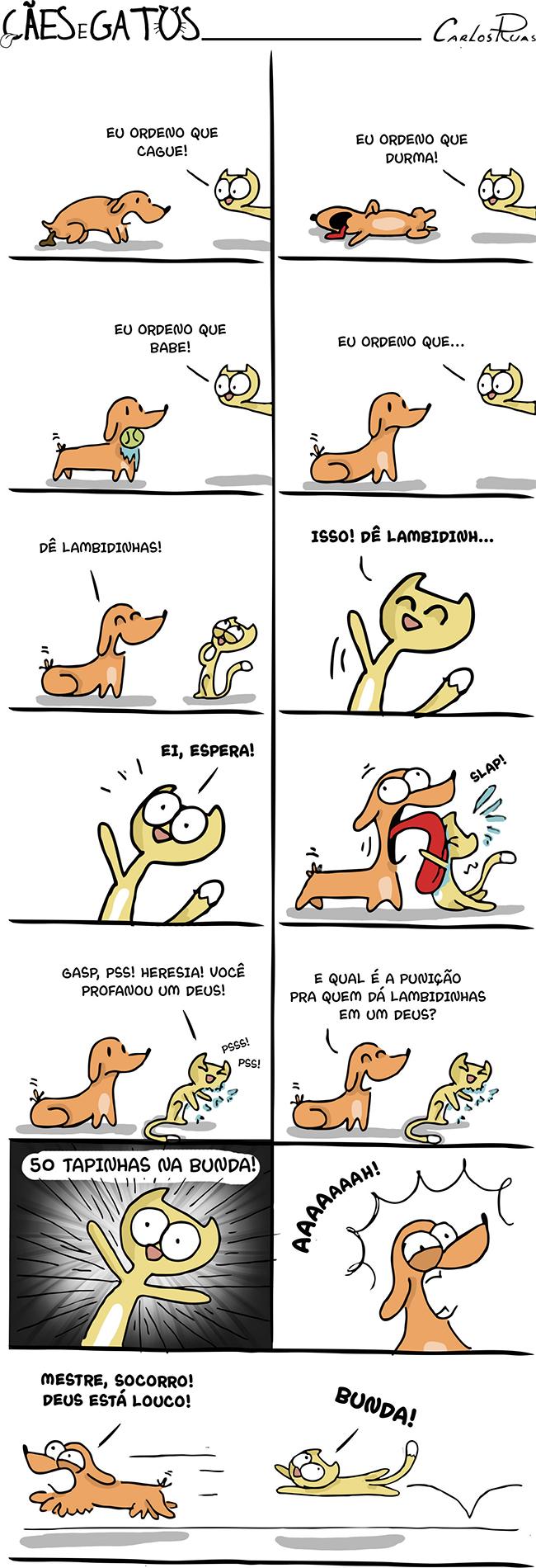 Cães e Gatos – Deeeeus gato! 4