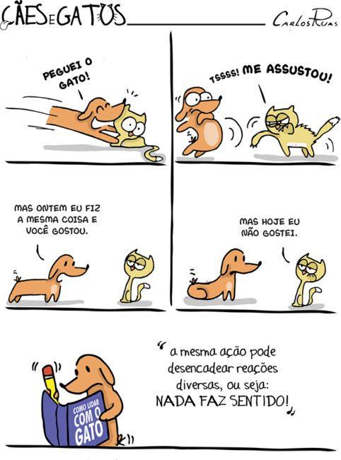 Cães e Gatos – Manual de como lidar com o Gato 3