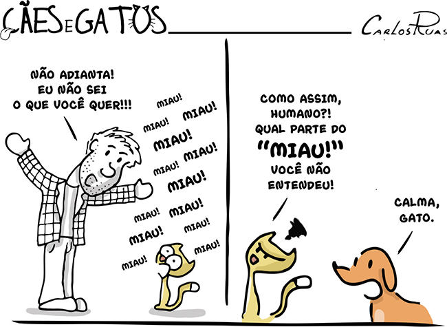 Cães e Gatos – Qual a parte do miau…