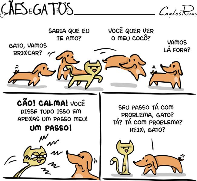Cães e Gatos – Temperamentos…