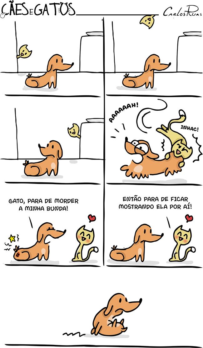 Cães e Gatos – Bunda!