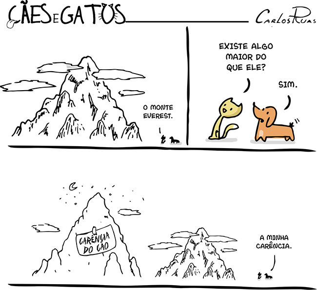 Cães e gatos – Carência
