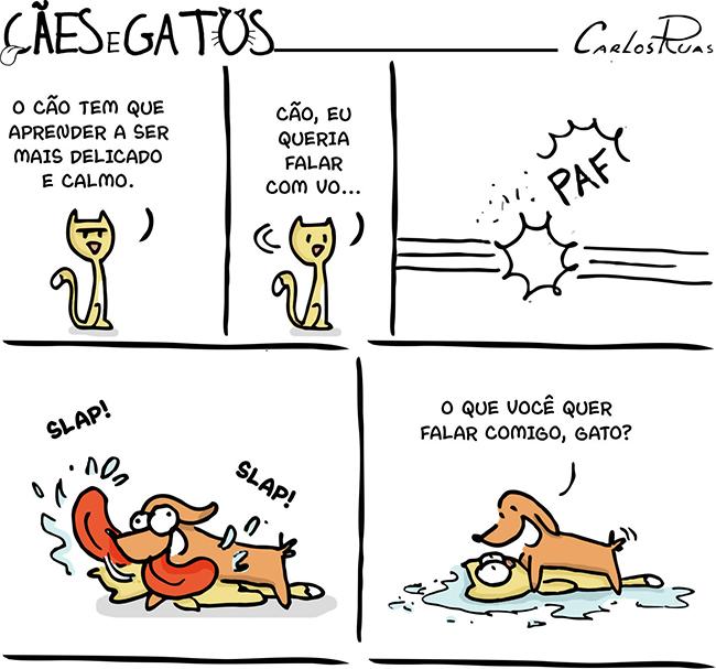Cães e Gatos – Diferenças