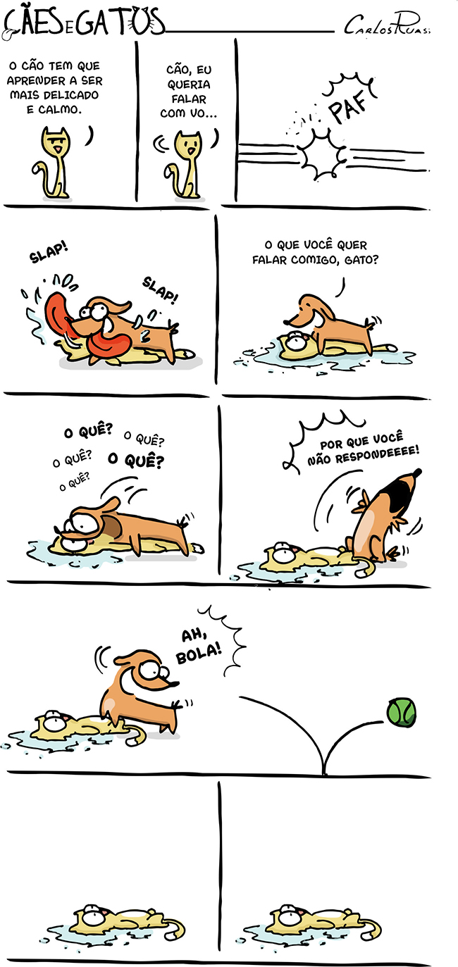 Cães e Gatos – Diferenças 2