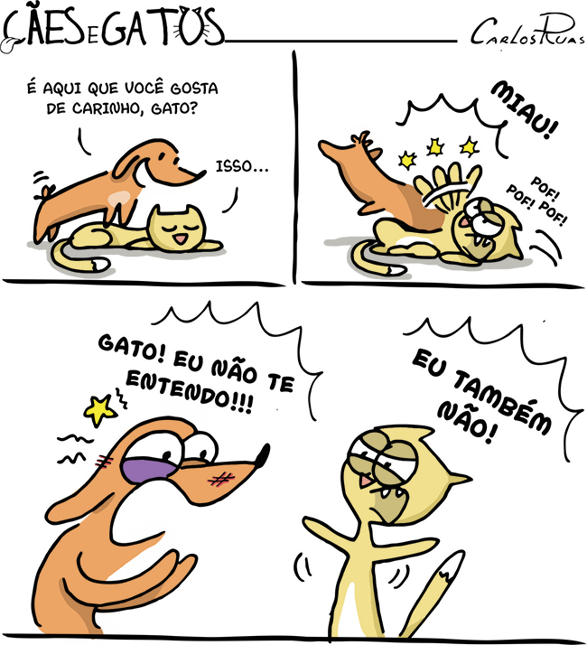 Cães e gatos – Vai entender