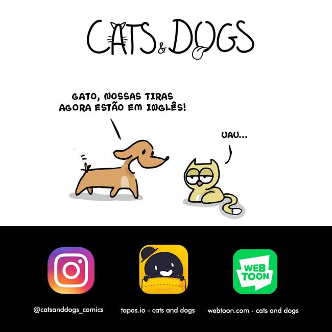 Cães e Gatos em inglês!!!