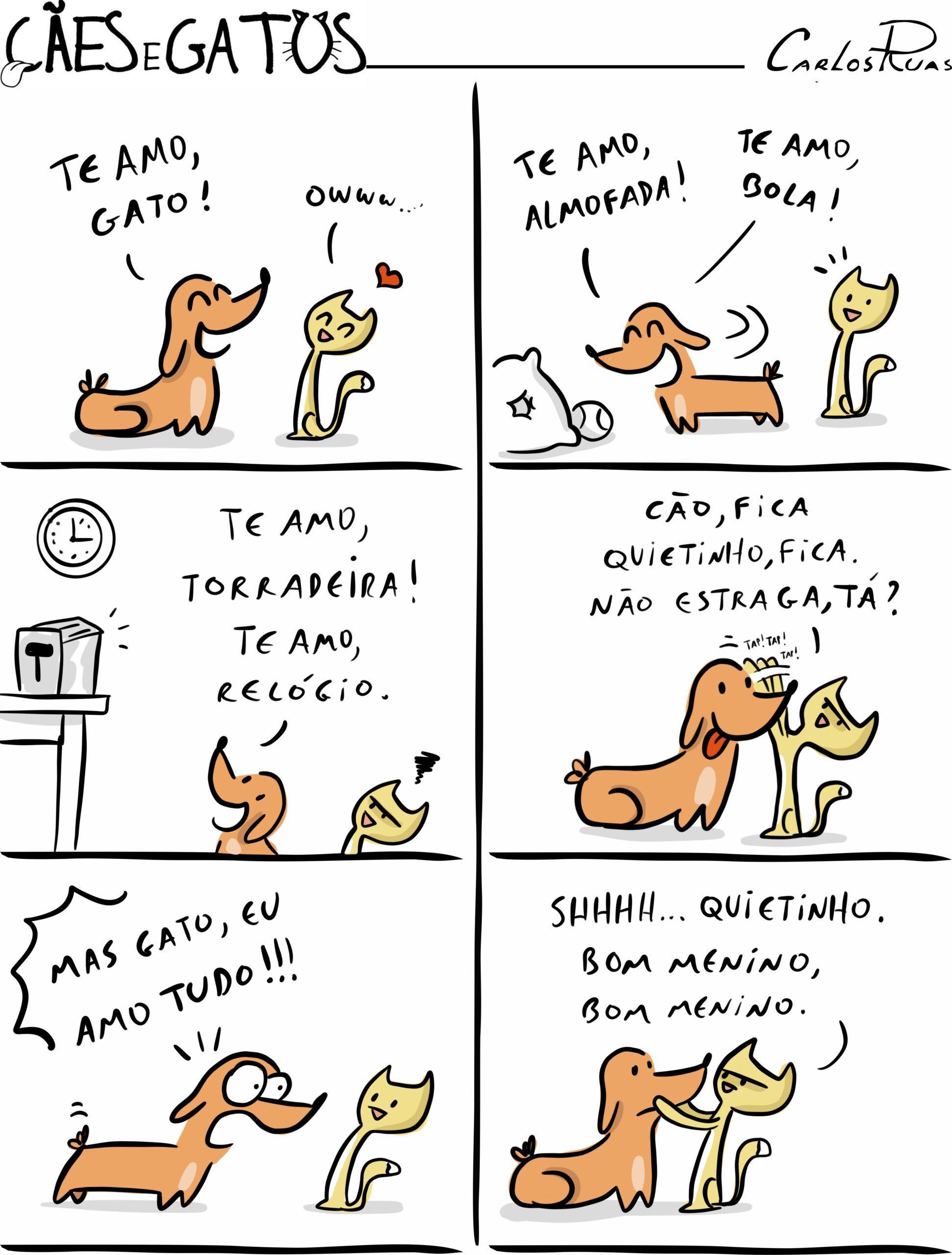Cães e gatos – TE amo
