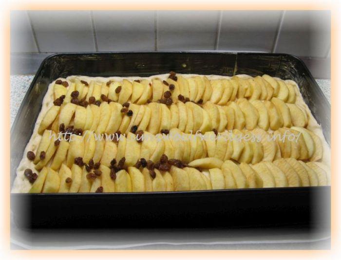Apfel Streuselkuchen Vom Blech Um Zwoelf Werd Gess Mein