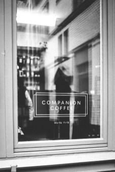Companion-2