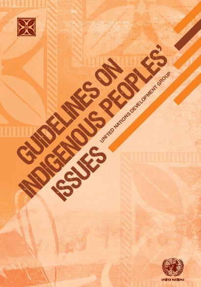 UNDG Guidelines