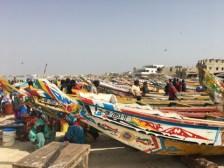 Senegal Fisheries