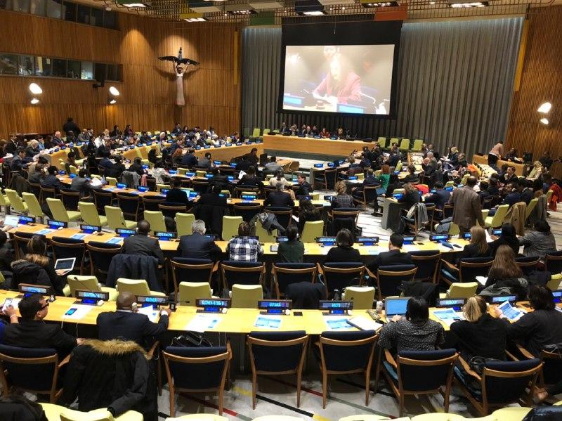 Sesión informativa conjunta de la Presidenta de la Asamblea General y el Enviado Especial del Secretario General para la Cumbre sobre el Clima 2019
