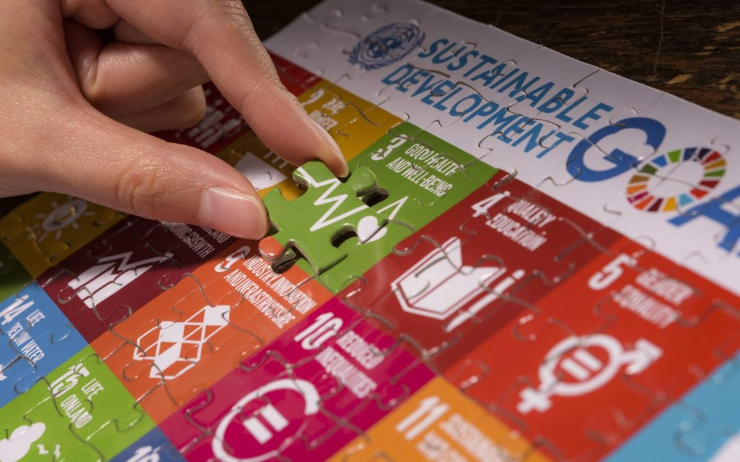 Taking action to achieve the 2030 Agenda and SDGs
