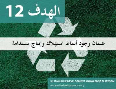 الهدف 12 - ضمان وجود أنماط استهلاك وإنتاج مستدامة
