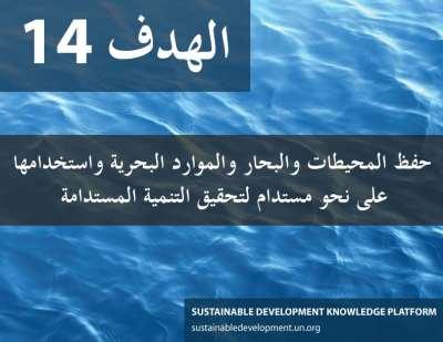 الهدف 14 - حفظ المحيطات والبحار والموارد البحرية واستخدامها على نحو مستدام لتحقيق التنمية المستدامة