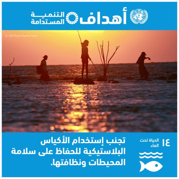 الهدف 14 – حفظ المحيطات والبحار والموارد البحرية واستخدامها على نحو مستدام لتحقيق التنمية المستدامة