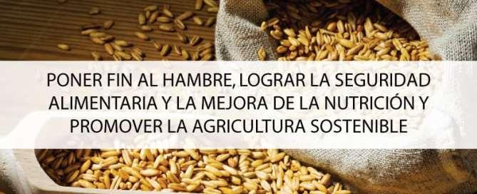 Objetivo 2: Poner fin al hambre, lograr la seguridad alimentaria y la mejora de la nutrición y promover la agricultura sostenible. Foto ONU