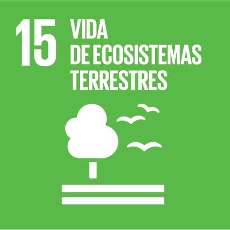 Objetivo 15 - VIDA DE ECOSISTEMAS TERRESTRES