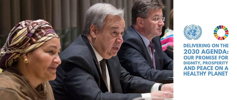 Posicionamiento del sistema de las Naciones Unidas para el desarrollo