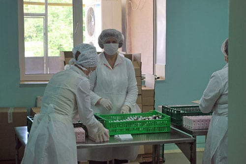 Women employees at a private company pack pharmaceuticals in Moldova.