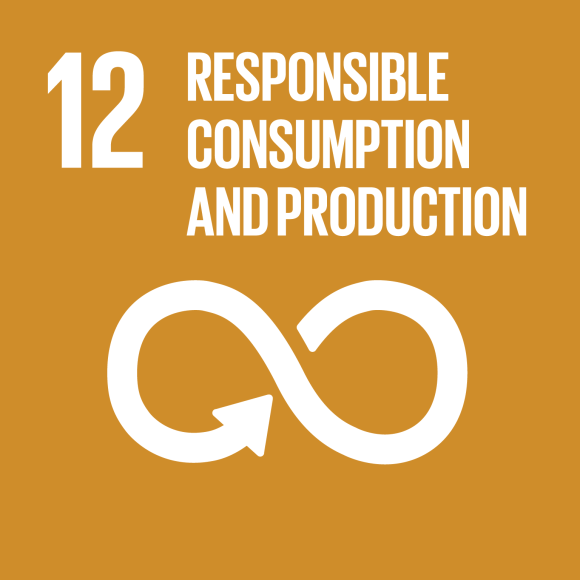 Goal 12 Responsible Consumption and Production