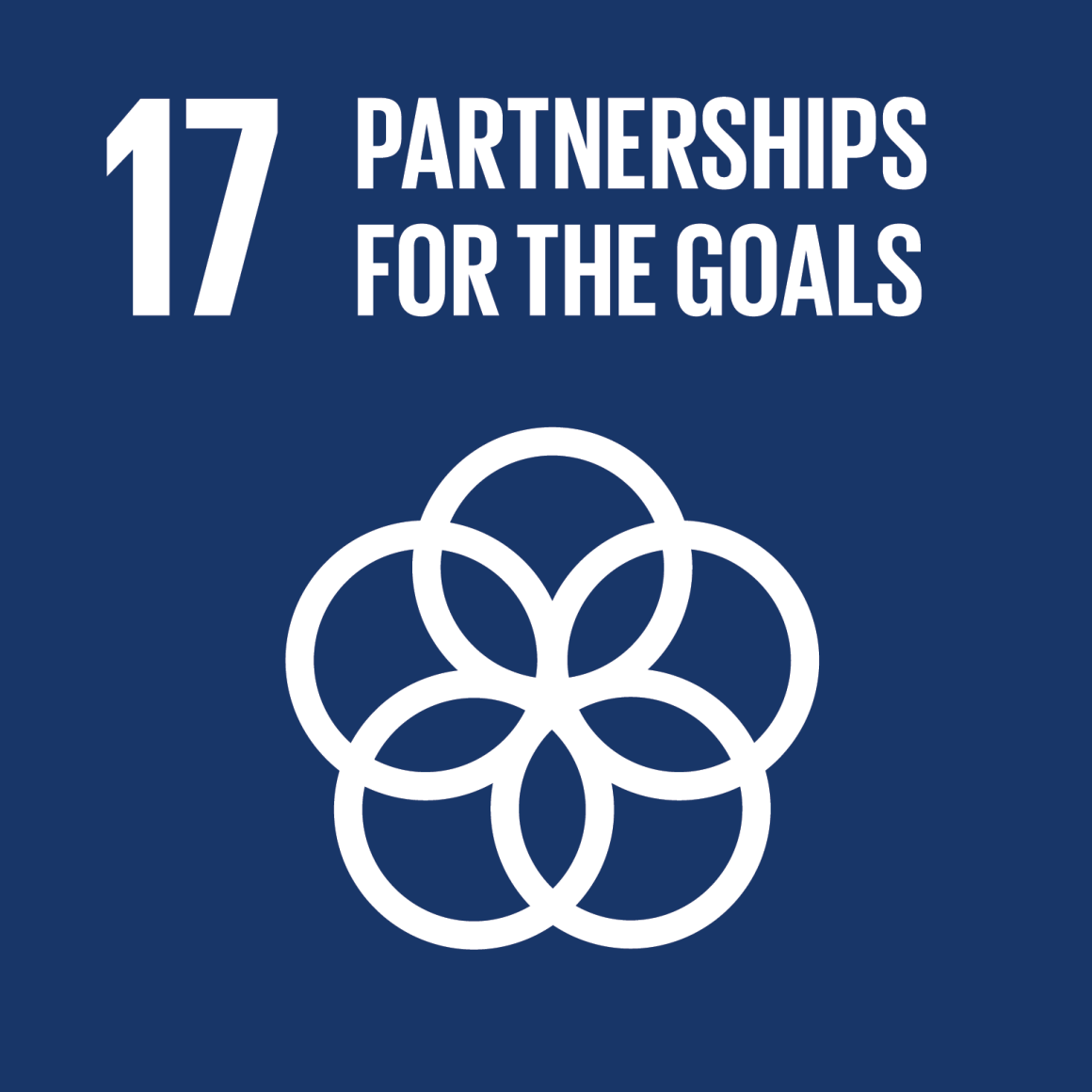 Global Partnerships  United Nations Sustainable Development Goal  Partnerships For The Goals